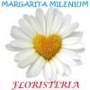 ¡Añade Floristería Margarita Milenium a tu barra de Google!